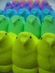 Peeps Rainbow