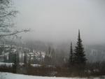 Misty on the mountain